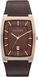 Часы Skagen SKW6004
