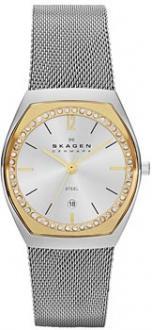 Часы Skagen SKW2050