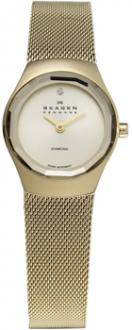 Часы Skagen 432SGSG